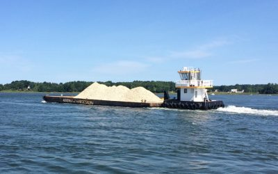 Restoring Oysters in the Great Bay Estuary