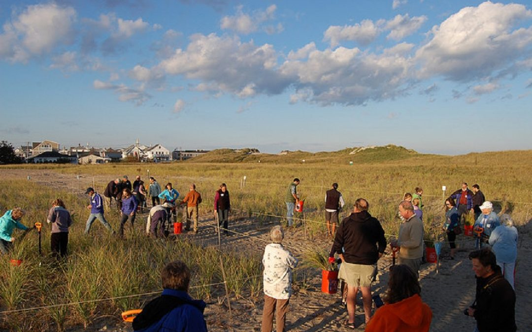Building Capacity for Resilience of Human and Natural Communities in New Hampshire Dune Systems: Phase II
