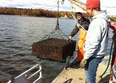 New Hampshire Great Bay Estuary Ecosystem Services Assessment
