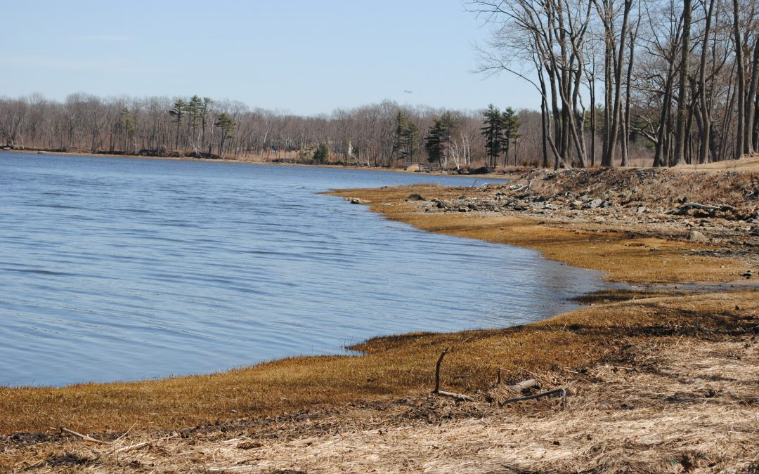 The NH Smart Shoreline Project: A living shoreline site suitability assessment