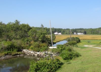 Tides to Storms 2 – North Hampton Vegetative Buffer Ordinance and Coordination