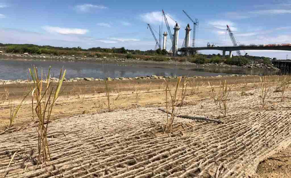 Cutts Cove living shoreline restoration project in Portsmouth, New Hampshire