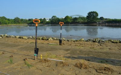 Workshop: Engineering Living Shorelines in New Hampshire
