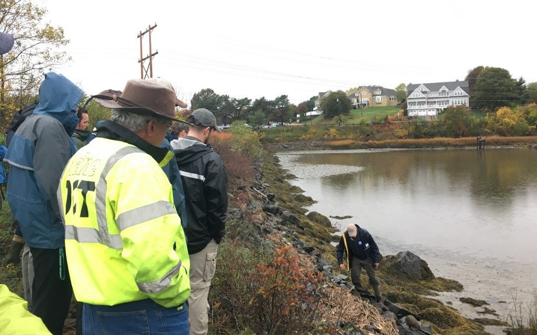 In My View: Living Shorelines