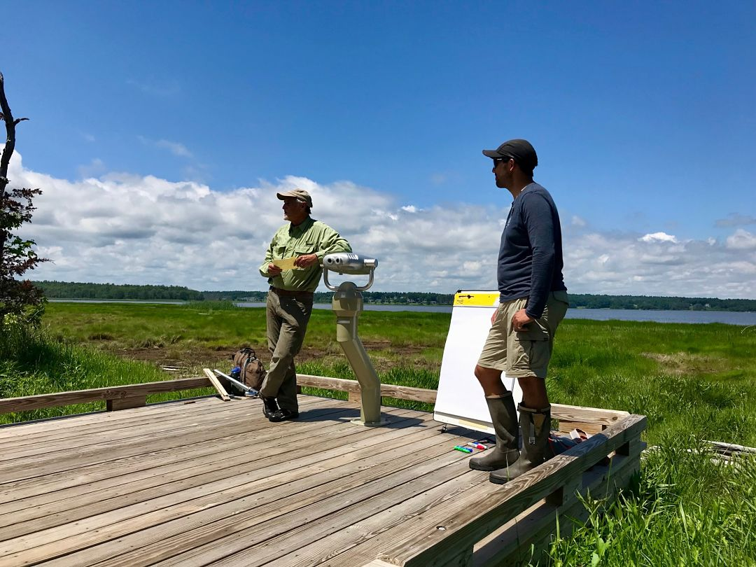 David Burdick (UNH) and Chris Peter (UNH) discuss marsh migration