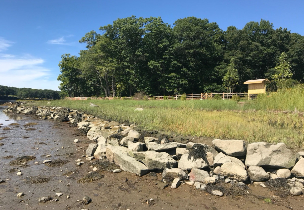 Living shoreline project in Durham, NH, at Wagon Hill Farm