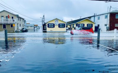 2020 King Tide Contest