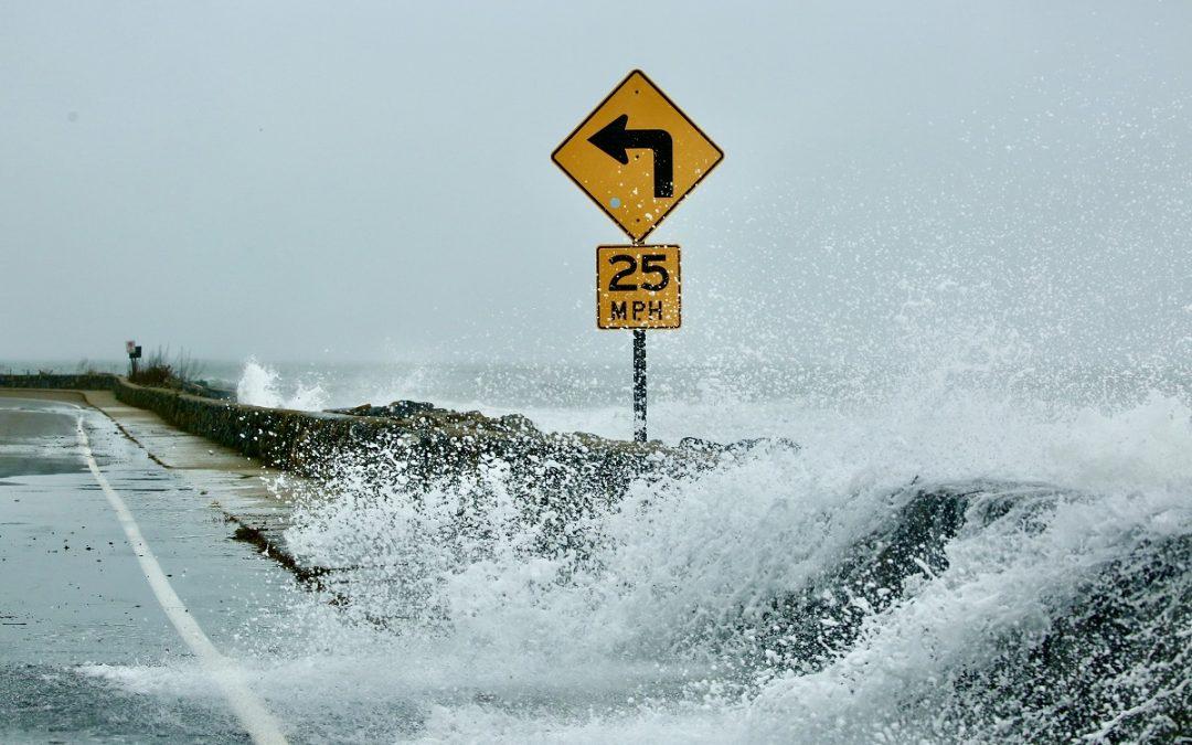 2021 Coastal Resilience Grants